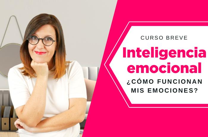 Curso breve de Inteligencia Emocional